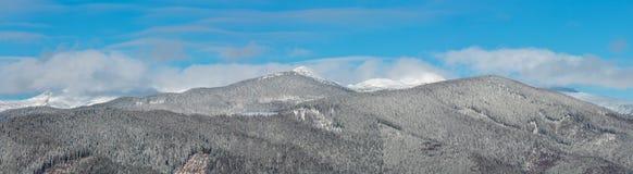 Montagnes carpathiennes de matin d'hiver, Ukraine photos libres de droits