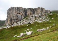 Montagnes carpathiennes en Roumanie photo libre de droits