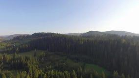 Montagnes carpathiennes en Ukraine 2018 banque de vidéos