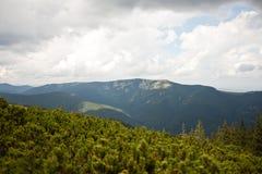 Montagnes carpathiennes et forêt Photographie stock libre de droits