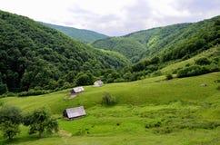 Montagnes carpathiennes le comté de Sibiu Roumanie Transylv Images libres de droits