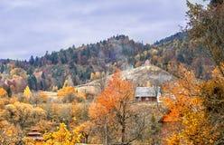 Montagnes carpathiennes pendant l'automne Scène colorée de paysage d'automne Images libres de droits