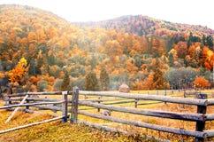Montagnes carpathiennes pendant l'automne Scène colorée de paysage d'automne Photos libres de droits