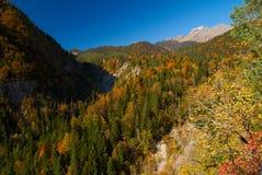 Montagnes caucasiennes en automne d'or. Photos libres de droits