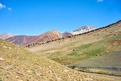Montagnes colorées en vallée de Kichik-Alai Images stock