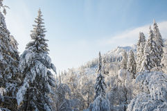 Montagnes couronnées de neige d'hiver Photographie stock