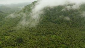Montagnes couvertes de forêt tropicale, Philippines, Siargao banque de vidéos