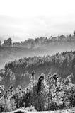 Montagnes couvertes par le brouillard Photos stock