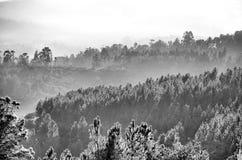 Montagnes couvertes par le brouillard Photos libres de droits