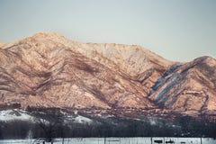 Montagnes couvertes par neige de l'Utah avec l'arrangement du soleil Photo libre de droits