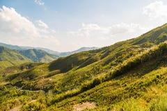 Montagnes décimées de déboisement photo libre de droits