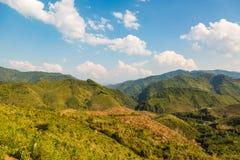 Montagnes décimées de déboisement image stock