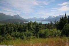 Montagnes d'Alaska image libre de droits