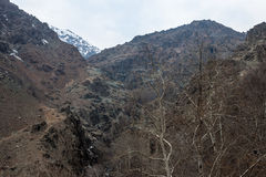 Montagnes d'Alborz, Iran Image stock