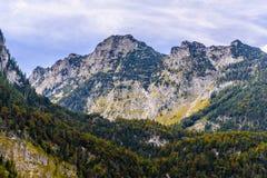 Montagnes d'Alpes couvertes de for?t, Koenigssee, Konigsee, parc national de Berchtesgaden, Bavi?re, Allemagne images libres de droits