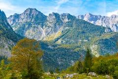 Montagnes d'Alpes couvertes de for?t, Koenigssee, Konigsee, parc national de Berchtesgaden, Bavi?re, Allemagne image stock
