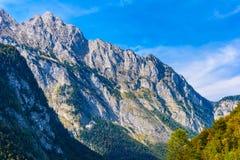 Montagnes d'Alpes couvertes de for?t, Koenigssee, Konigsee, parc national de Berchtesgaden, Bavi?re, Allemagne photographie stock libre de droits