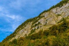 Montagnes d'Alpes couvertes de for?t, Koenigssee, Konigsee, parc national de Berchtesgaden, Bavi?re, Allemagne images stock