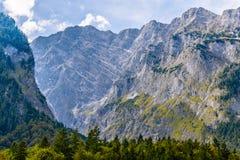 Montagnes d'Alpes couvertes de for?t, Koenigssee, Konigsee, parc national de Berchtesgaden, Bavi?re, Allemagne image libre de droits