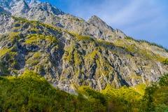 Montagnes d'Alpes couvertes de for?t, Koenigssee, Konigsee, parc national de Berchtesgaden, Bavi?re, Allemagne photo libre de droits