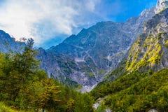 Montagnes d'Alpes couvertes de for?t, Koenigssee, Konigsee, parc national de Berchtesgaden, Bavi?re, Allemagne photographie stock