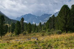 Montagnes d'Altai, Russie Photo stock