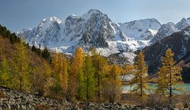 Montagnes d'Altai, Russie, Sibérie Photo stock