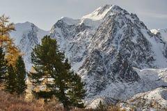 Montagnes d'Altai, Russie, Sibérie Photo libre de droits