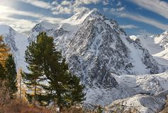 Montagnes d'Altai, Russie, Sibérie Images stock
