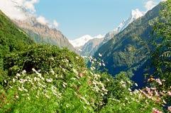 Montagnes d'Annapurna Himalaya, Népal Images libres de droits