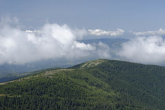 Montagnes d'Apuseni Images stock