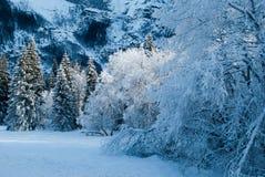Montagnes d'hiver Photographie stock libre de droits