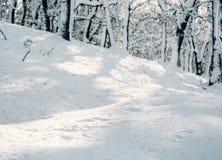 Montagnes d'hiver de Milou Photos stock