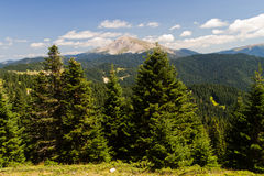 Montagnes d'Ilgaz Images libres de droits