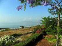 Montagnes d'Israel Tiberius Images libres de droits