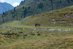 Montagnes dans le Bonaigua dans la vallée d'Aran, Pyrénées photo libre de droits