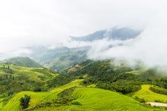 Montagnes dans le brouillard photo stock