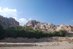 Montagnes dans le désert Photo libre de droits