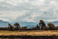 Montagnes dans Montenegro Photographie stock libre de droits