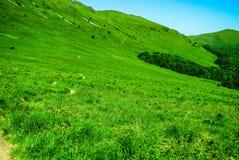 Montagnes de Bieszczady Photos stock