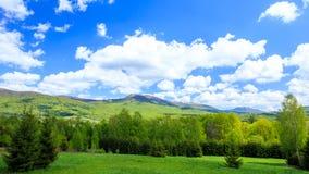 Montagnes de Bieszczady, Pologne image libre de droits