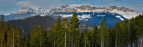 Montagnes de Bucegi en Roumanie Photographie stock libre de droits