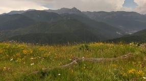 Montagnes de Bucegi, Roumanie Photographie stock