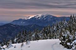 Montagnes de Buila-Vanturarita Image stock
