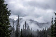 Montagnes de cascade avec les nuages et la forêt Photo stock