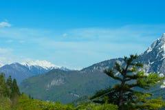 Montagnes de Caucase en l'Abkhazie Image libre de droits