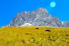 Montagnes de Caucase, village Juta champ vert et crête neigeuse Chaukhebi en été georgia Photographie stock