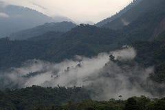 Montagnes de Cloudforest Equateur loin Image libre de droits