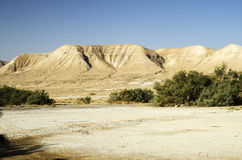 Montagnes de désert d'Israel Judean Photo libre de droits