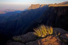 montagnes de drakensberg de l'Afrique du sud Image libre de droits